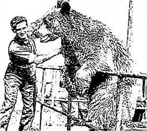 bear_and_soldier