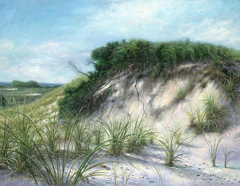 sand dunes kissing picnic