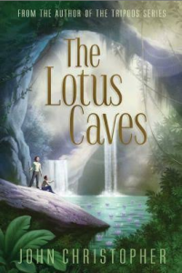 The Lotus Caves (S&S)