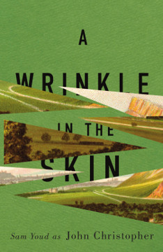 a wrinkle in the skin